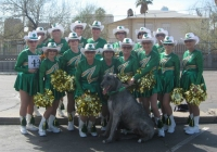 jazzy-poms-green-with-dog